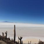 Panorámica de la isla de Incahuasi, hace millones de años dónde ahora hay sal era Mar