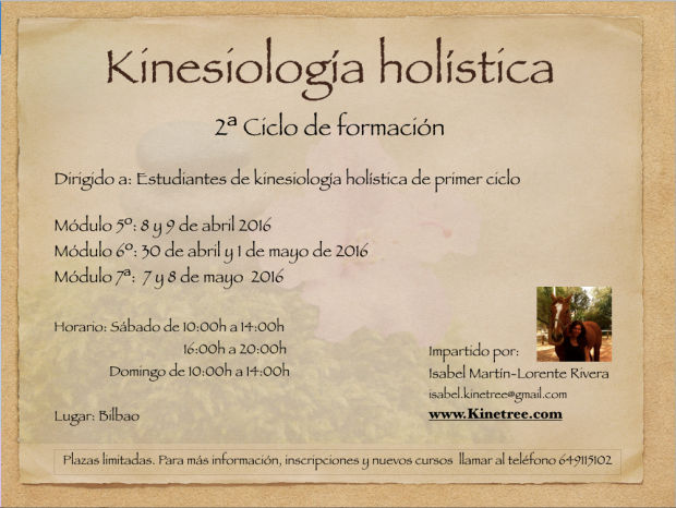 kinesiología holística. Bilbao