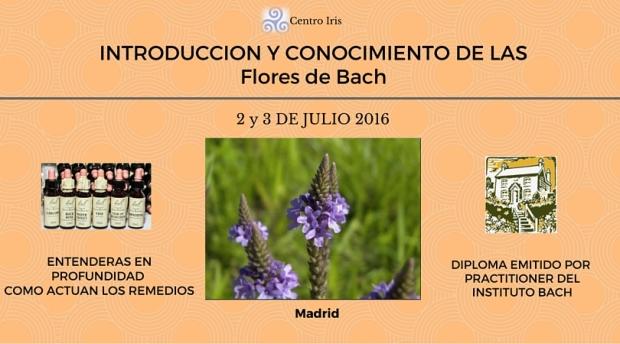 Curso introducción a las flores de Bach. Madrid